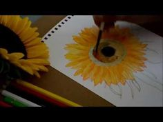 How to Paint Sun Flower With Water Color (Revised)