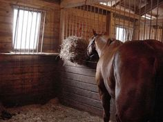 How to Tie a Hay Net in a Horse Stall thumbnail