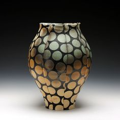 wood fired porcelain with slip and glaze  by David W. Bolton