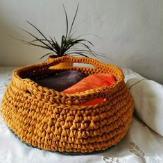 Customized Crochet Cat Bed Mustard and Grey Cat or Small Dog   Etsy Girl Dog Beds, Girl And Dog, Pet Beds, Crochet Pet, Knitted Cat, Toy Storage Baskets, Kid Toy Storage, Recycled T Shirts, Recycled Yarn