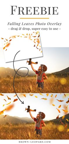 Free download from Brown Leopard - falling leaves photo overlay. Great autumnal photo overlays for creative Photographers. Just click and download.