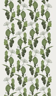 Agata Wierzbicka #illustration #botanical #leaves #pattern #green #design