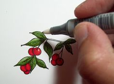 My Blog: Anyone Can Color---A Copic Marker Tutorial!