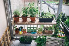 Neue #DIY Idee der Ghostbastlers. Ein Blumenbord für den Balkon. Schau dir die Anleitung an. #diy #doityourself #blumen