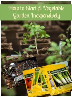 How to Start a Garden - Start a Vegetable Garden Inexpensively