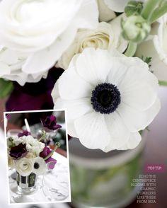 I had this flower in my wedding bouquet xoxo Anemones xoxo April :) Fall Wedding, Our Wedding, Dream Wedding, White Anemone, Beautiful Flowers, Prettiest Flowers, Anemones, Ranunculus Bouquet, Wedding Flowers