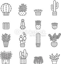 Succulents and cacti outline vector icons set. Modern minimalistic design.