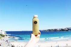 Apple, Kiwi & Lime at Bondi Beach! Pressed Juices - Positively Life Changing!