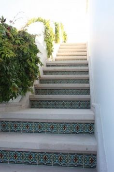 Concrete steps with Mexican tile on the risers