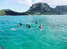 No need to hold your breath, paradise is closer than you think! A 2hr flight off the North Coast of NSW, Lord Howe Island is a snorkeler's dream with a sanctuary of wildlife both above and beneath the surface. #NewSouthWales @schoolmumpics