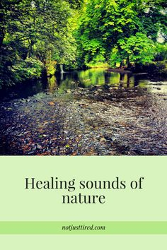 Healing sounds of nature - Not Just Tired