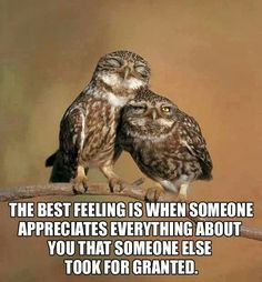 the best feeling is when someone appreciates everything about you that someone else took for granted