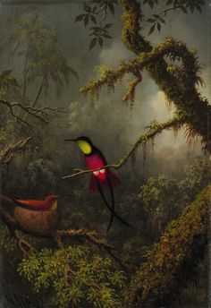 American Art, New York: Martin Johnson Heade, 'A Pair of Nesting Crimson Topaz Hummingbirds', circa 1875-83