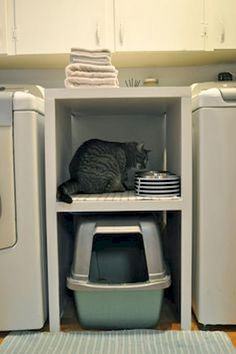 Laundry room space saving idea - cat litter box in between the washer and dryer. Laundry room space saving idea - cat litter box in between the washer and dryer. great use of a small space! Room Organization, Room Remodeling, Home Organization, Tiny Laundry Rooms, Litter Box, Laundry, Laundry In Bathroom, Home Decor, Room Makeover