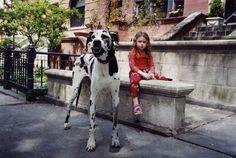 Peculiar foto de Robin Schwartz a su hija Amalia