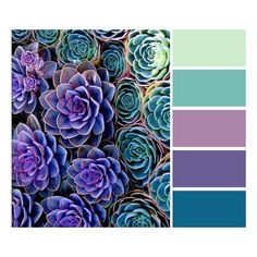 Wedding colours palette idea ??? I need to talk to Vince to finalize our exact colours before selecting the colour palette for bridesmaid dresses