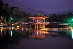 奈良公園の周辺では8月5日から平城宮跡や薬師寺などの歴史的な建造物のライトアップイベントなら燈花会が行われます 昼間見ても素晴らしい建築物ばかりなのですがライトアップされるとまた違った姿を見せてくれますね 特に奈良公園の浮雲園地に並べられた2万本以上のろうそくは圧巻ですよ ぜひこの機会に夏の夜の奈良をお楽しみください  #奈良 #奈良公園 #イベント tags[奈良県]