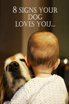 Have you ever wondered if your dog loves you? Dogs show affection very differently from we do. How many signs of these signs of love does your dog show?