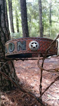 Personalized Leather Dog collar with Lone Star Conchos and a basket weave design by Behind the Wire Shop.