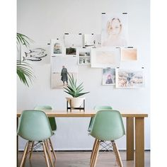 Mint green Eames dsw chairs 💖 #eames #chairs #interior #design #inspiration #inspo #home #house #love #livingroom #white #pastel | SnapWidget