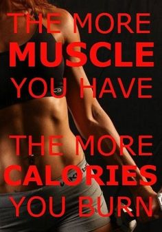 the more muscle you have, the more calories you burn
