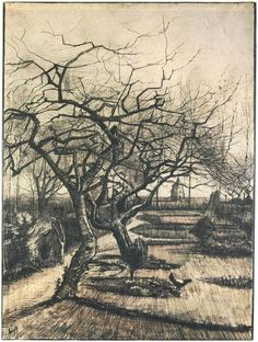 Vincent van Gogh Parsonage Garden Drawing