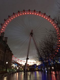 Beauty of the London Eye