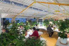 O Second Home Lisboa, um coworking em Portugal, foi preenchido com mil plantas. Além de decorar, os vasos reduzem ruídos e melhoram a qualidade do ar.
