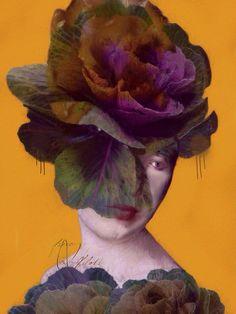 Sorrow | Sarah Jarrett