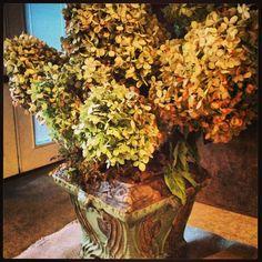 Fall Dried Hydrangea Arrangement