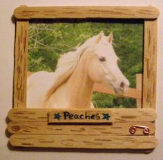 Stall Frame - take pic of kid and frame