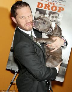 Tom Pretty Men, Pretty Boys, Gorgeous Men, Beautiful, Tom Hardy, Tinker Tailor Soldier Spy, Man And Dog, Staffordshire Bull Terrier, Martial