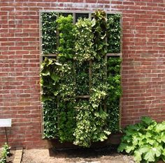 More cool vertical gardening (at Apartment Therapy).