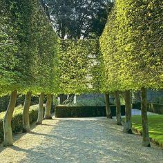 13 Stunning Garden Allées : Architectural Digest