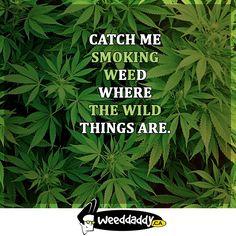 Good morning! ❤️😊🤞💪#weeddaddy #buyweedonline #mailorder #marijuana #canadahttp://weeddaddy.ca/