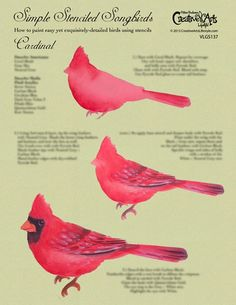 Color Pencil Drawing Tutorial Simple Stenciled Songbirds / Cardinal Worksheet - This is a step-by-step worksheet to learn how to paint the Cardinal. Bird Painting Acrylic, Watercolor Bird, Painting & Drawing, Watercolor Paintings, Watercolors, Bird Paintings On Canvas, Painting Stencils, Tole Painting Patterns, Painting Lessons