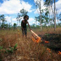 Using fire to manage Country - Upper Primary - Cool Australia Aboriginal Education, Aboriginal History, Aboriginal Culture, Australian Native Garden, Australian Bush, Travel Oz, Indigenous Knowledge, Art Terms, World Globes