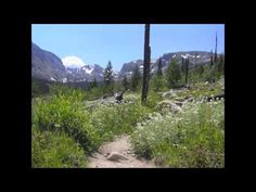 This is the original Rocky Mountains Adventure (trip for women only). It's the trip that changed the lives of those who participated. Rated the trip they . Travel Workout, Sanibel Island, Estes Park, Rocky Mountain National Park, Wine Country, Rocky Mountains, Workout Videos, Great Places, Adventure Travel