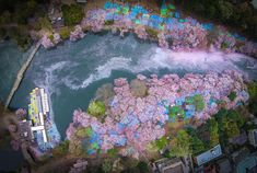 As soon as winter steps back and spring comes with its warmth, photographer Danilo Dungo spends his time at Inokashira Park in Tokyo, which is famous for its magnificent blooming cherry trees. The artist became already professional at capturing this beauty from various angles, while the most remarka…