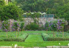 Stone Wall Heliotrope Garden