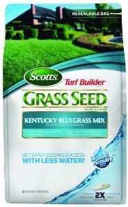Scotts 18169 Turf Builder Kentucky Bluegrass Seed Mix Bag, 7-Pound by Scotts. $29.26. Scotts most cold tolerant grass seed mix. Seeds up to 4725 sq ft. Get early seeding success with less water. Self repairs from heat, drought, and traffic damage. Absorbs 2x more water than uncoated seed. Scotts Turf Builder Kentucky Bluegrass Seed Mix helps you get early seeding success with less water. It absorbs 2x more water than uncoated seed. Self repairs from heat, drought, and traffic...