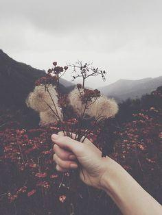 #bouquet, #automne,