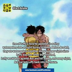 The pain. Ace and Luffy, the D. Brothers, luffy meets ace at seven though One Piece Funny, One Piece Comic, One Piece Manga, Monkey D Luffy, One Piece Theories, One Piece New World, Akuma No Mi, Ace Sabo Luffy, One Piece Cosplay