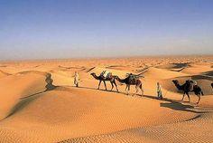 Die #Sahara, #Tunesien  The Sahara, #Tunesia    © René Mattes
