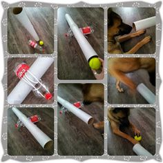 Dog games diy - lots of good dog ideas just push translate to see what they say! Brain Games For Dogs, Dog Games, Animal Games, Diy Dog Toys, Pet Toys, Dog Boredom, Dog Enrichment, Dog Puzzles, Dog Minding
