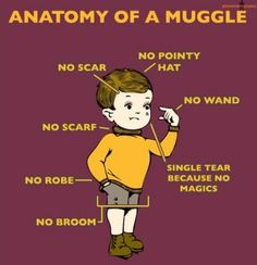 Oh Harry Potter :)