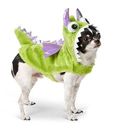 Green Dragon Pet Dog Costume (XS) Martha Stewart Pets https://www.amazon.com/dp/B018MSCR1Q/ref=cm_sw_r_pi_dp_x_6UAryb9DJ4653