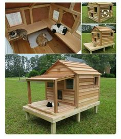 Cats Toys Ideas - Luxurious Outdoor Cat and Dog Homes For Your Furry Friends! get some yourself some pawtastic adorable cat shirts, cat socks, and other cat apparel by tapping the pin! - Ideal toys for small cats Niche Chat, Cat House Plans, Ideal Toys, Cat Enclosure, Outdoor Cats, Cat House Outdoor, Outdoor Cat Shelter, Outdoor Sheds, Outside Cat House