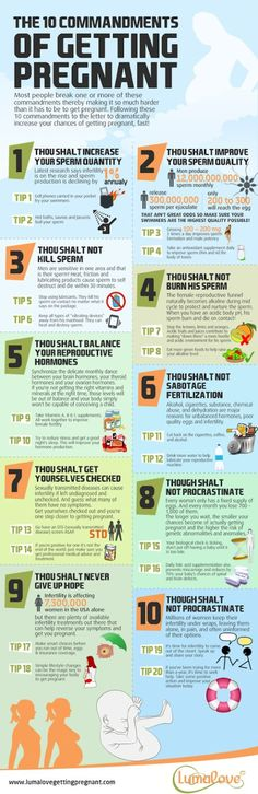 10 Commandments of Fertility & Getting Pregnant (INFOGRAPHIC)