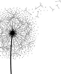 Dandelion Print Black and White Minimalist Poster Scandinavian